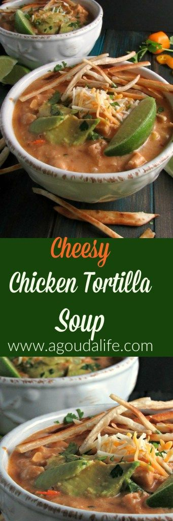 Cheesy Chicken Tortilla Soup packed with chicken, garbanzo beans and smokey heat from chipotle peppers all topped with crispy tortilla strips.