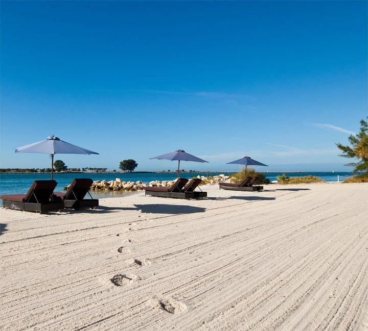 Private Beaches: 19 Best Weddings At Wyndham Garden Hotel On Clearwater