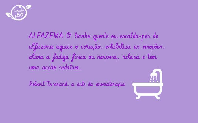 óleo essencial de alfazema/lavender essential oil #aromaterapia #oleo_essencial