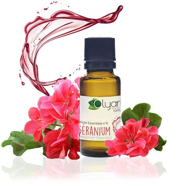Une des plus magiques en aromathérapie, l'huile essentielle de géranium est relaxante, cicatrisante, combat les problèmes de gencives et prend soin de la peau, Olyaris l'a dénichée pour vous !