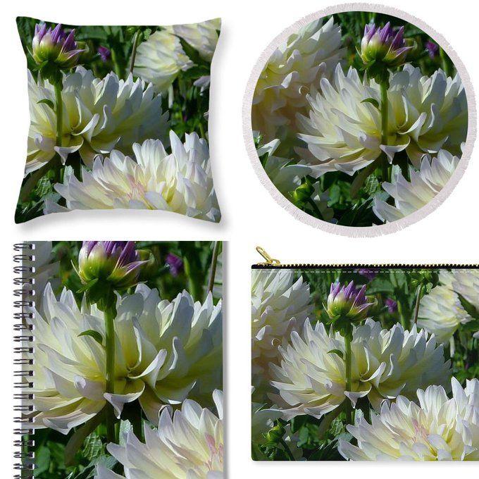 Twitter Check out Susan Garren on Fine Art & Pixels  Flower Gallery for Gift Ideas of Wall Art, Travel Accessories, ROUND Beach Towels, Throw Pillows, Pouch, Spiral Notebook & much more.  Hues of Softness Dahlia fineartamerica.com/featured/hues-…