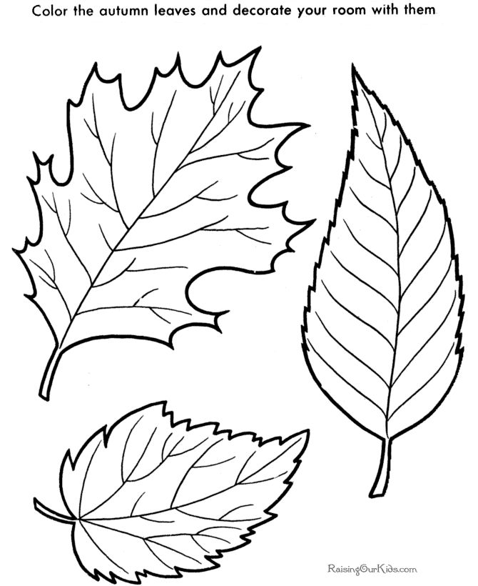 Pictures to Print and Color | Tree leaf to print and color 003