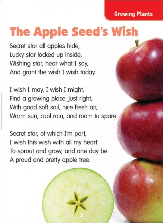 Science Poems Flip Chart | The Apple Seed's Wish