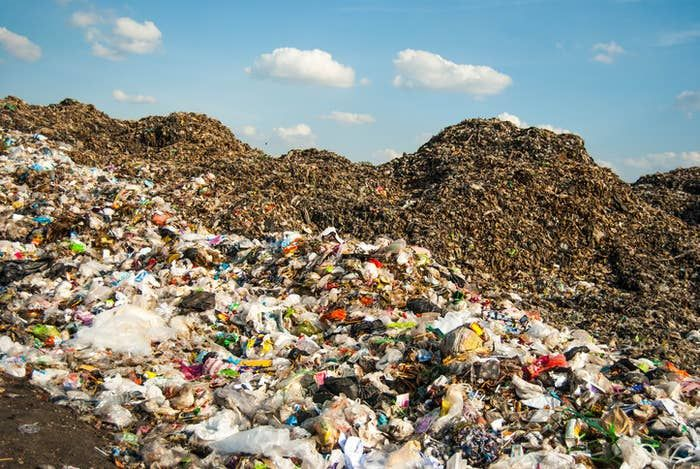 For starters, when you picture a landfill, you probably picture something  like this. in 2021 | Landfill, Pictures, Plastic waste