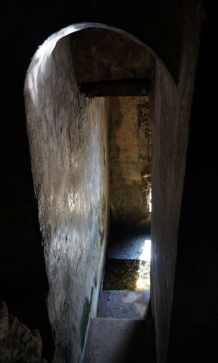 The Rebirth of Pinagrealan Cave Essay Sample