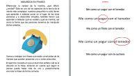 Colección de frases con absurdos verbales para trabajar la compresión lectora y el razonamiento