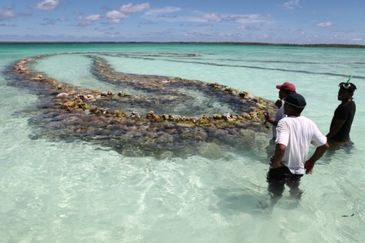 54 Best Images About Kiribati Republic Of On Pinterest Christmas Island Crabs And Islands