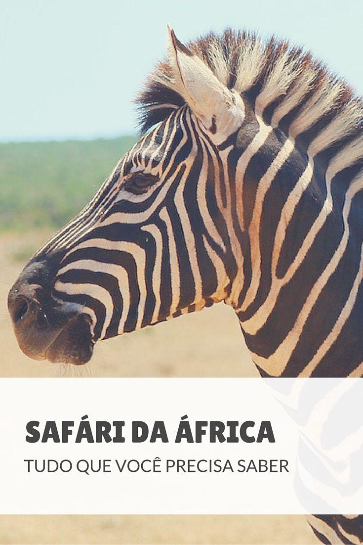 Quer fazer um safári na África? Veja por onde começar: confira dicas para organizar melhor sua viagem e fazer do seu safári uma experiência inesquecível!