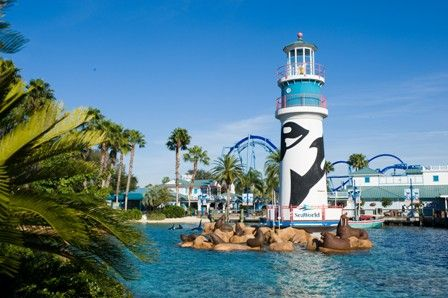 Top Tips to Maximize Your Fun at SeaWorld Orlando   Inside Seaworld