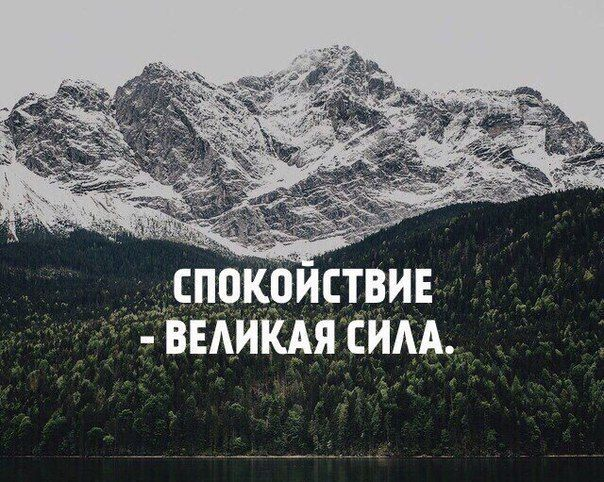 x3OHARK5pHU.jpg (604×482)