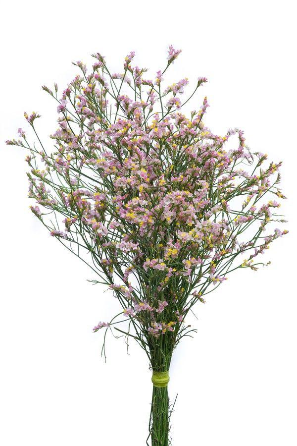 Various Le Bal De Fleur