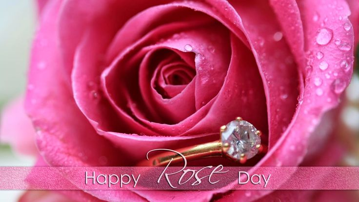 Happy Rose Day Quotes Sms Images Wallpapers 2017 - EarticleBlog