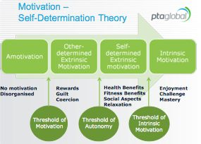 Eliciting Behavior Change By Facilitating Intrinsic Motivation   Article   PTontheNet