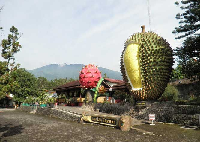 Warso Farm Entrance Bogor