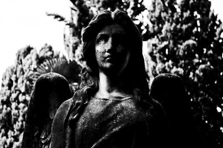 Un vero museo a cielo aperto accoglie i visitatori con quattro statue che simboleggiano rispettivamente il Silenzio, la Carità, la Speranza e la Meditazione.Un enorme patrimonio storico-artistico è custodito nel quartiere Tiburtino e, soprattutto, all'interno del cimitero comunale Vera