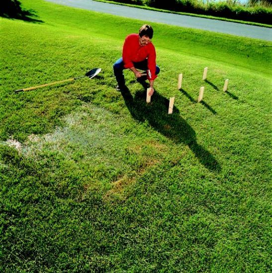 How to improve your lawn's drainage by digging a swale (shallow ditch to carry water to a designated collection area).