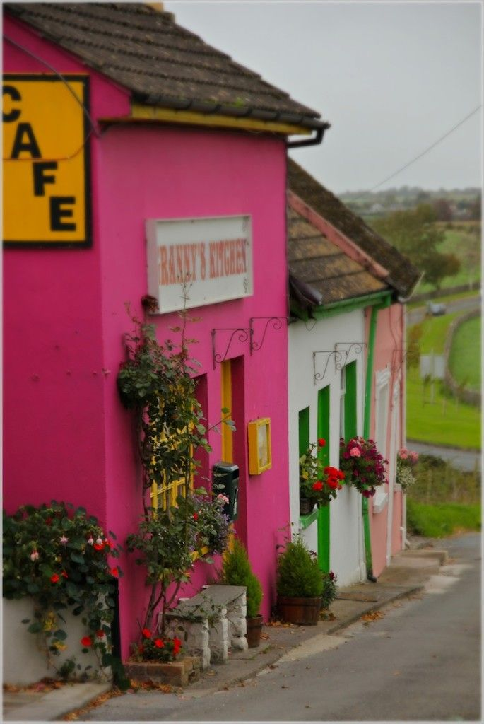 Potato & Leek Soup...and Pink Irish Houses - Thyme