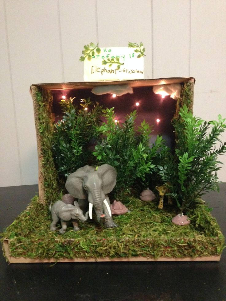 Elephant grassland habitat shoe box project