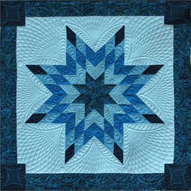 Wow! What a surprise to find my quilt on pinterest--quilted by Diane Anderson; created by Deb Morley (Quilter's Crossing, Tomball, TX)