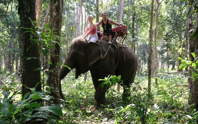 Elephant rides available less than 20min away.