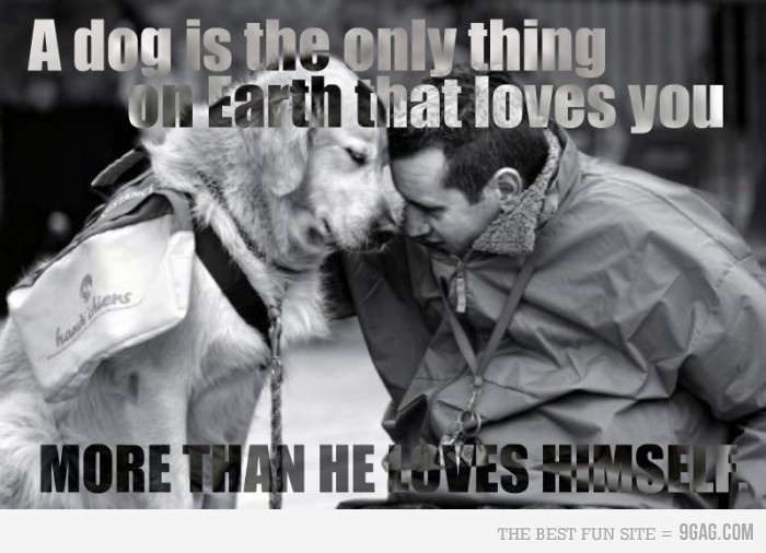 A dog is the only thing on Earth that loves you more than he loves himself.