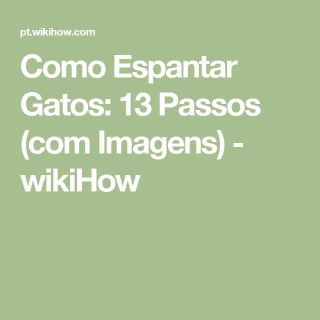 Como Espantar Gatos: 13 Passos (com Imagens) - wikiHow