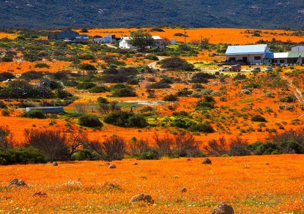 Lees meer oor die Noord-Kaap op LekkeSlaap.co.za.