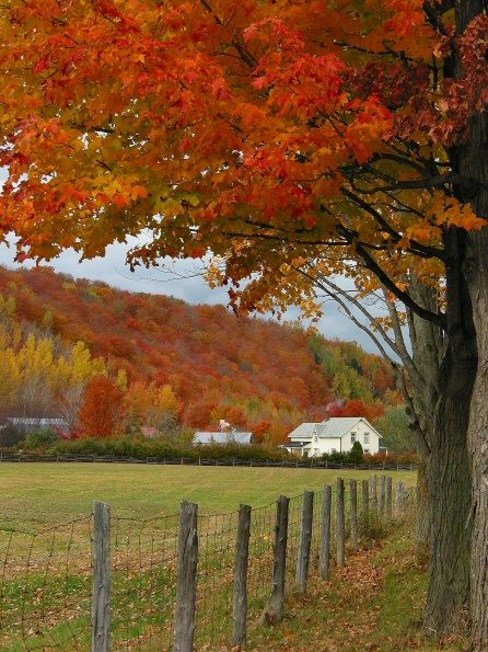 Autumn colors in Quebec, Vallee-Jonction, Canada