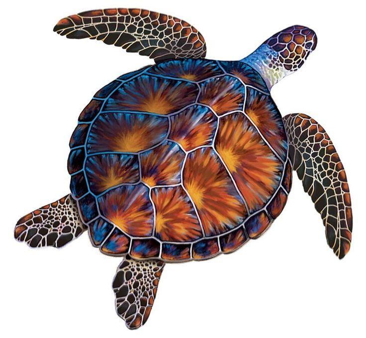 черепаха рисунок фото всегда идет контакт