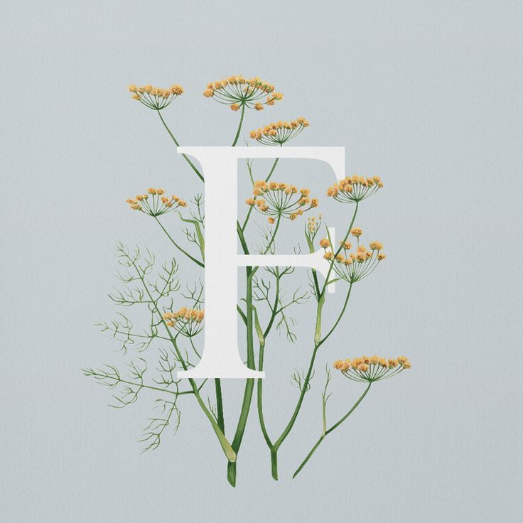 Fennel  Add a creative monogram or create your own logo to send your loved ones and friends thank you cards for coming to your events.   #thankyoucards