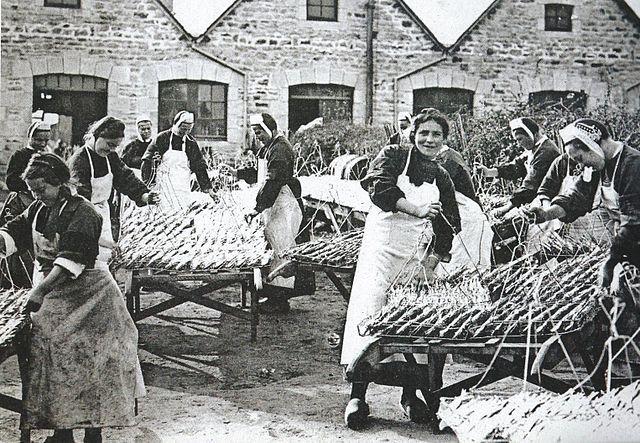 L'usine Vallière - Pays Bigouden -   Brittany