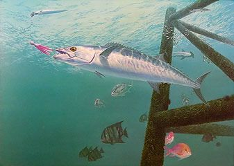 life of the party kingfish paintings http://finefishart.com/kingfish-fish-painting.html
