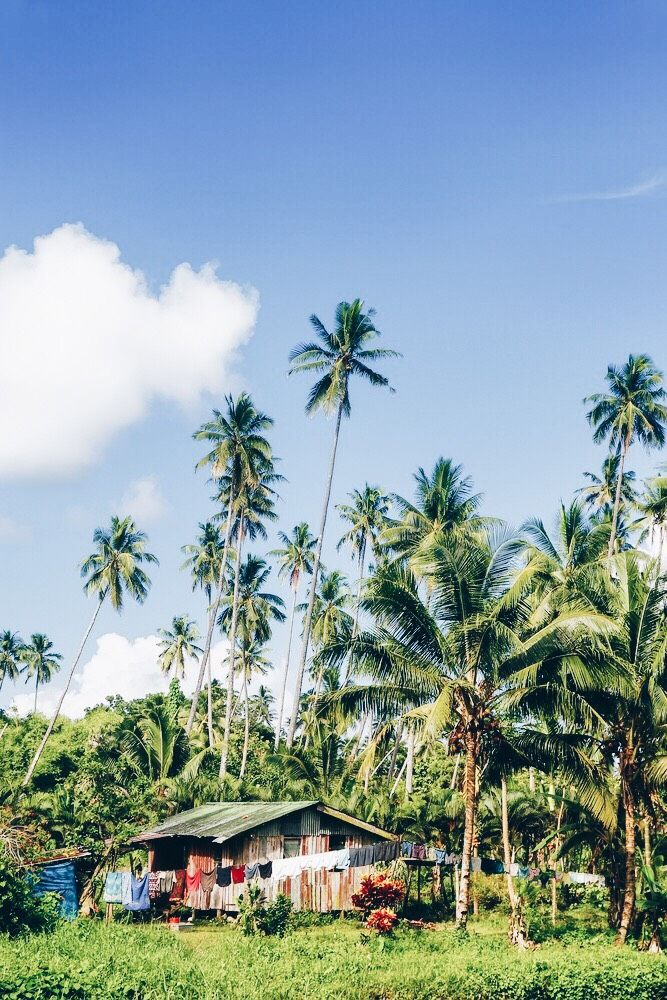 A Couple's Guide to the Fiji Islands