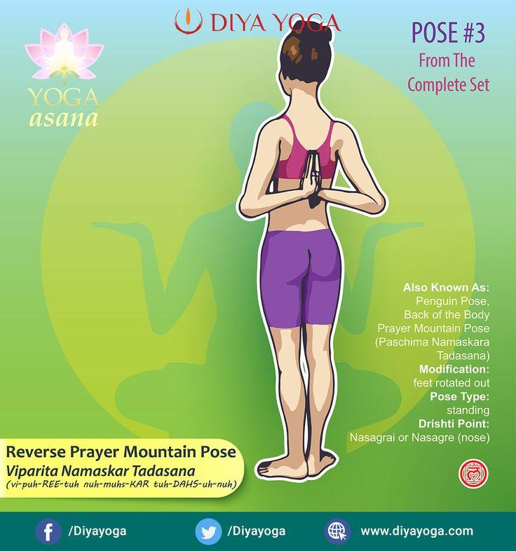 Viparita Namaskar Tadasana is translated as Reverse Prayer ...