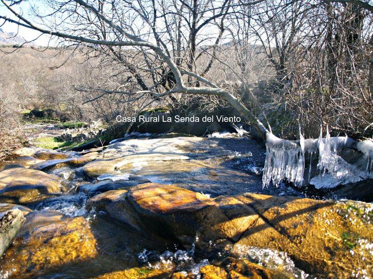El arroyo helado en la Dehesa Vieja. Es Navidad.