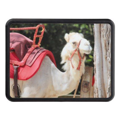Ivory camel tow hitch cover - photography gifts diy custom unique special