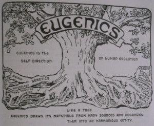 """Árvore da Eugenia, metáfora do símbolo da evolução humana. O cientista inglês Francis Galton, baseando-se na obra de Charles Darwin, propôs a seleção artificial para o aprimoramento da população humana através de casamentos seletivos entre brancos, unicamente. Nascia a eugenia, termo criado por Galton, em 1883, significando """"bem nascido"""". Suas ideias tiveram enorme repercussão e foram elogiadas no meio científico."""