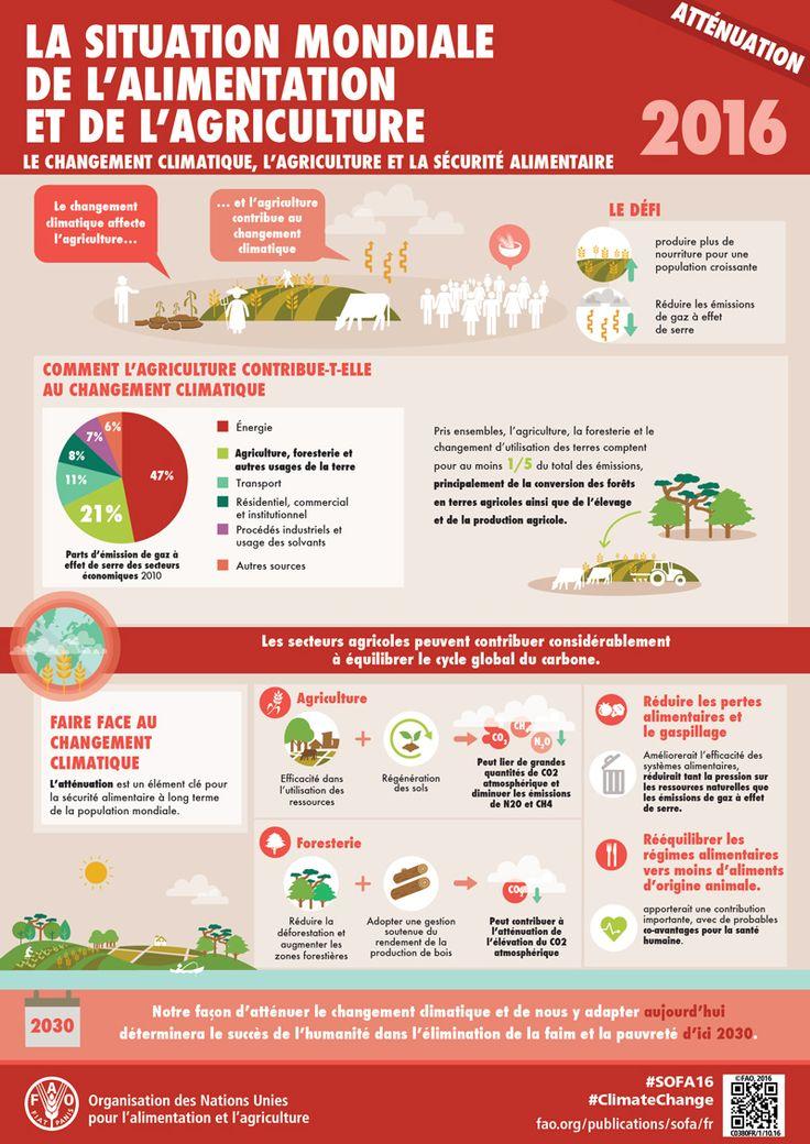 La situation mondiale de l'alimentation et de l'agriculture: Atténuation