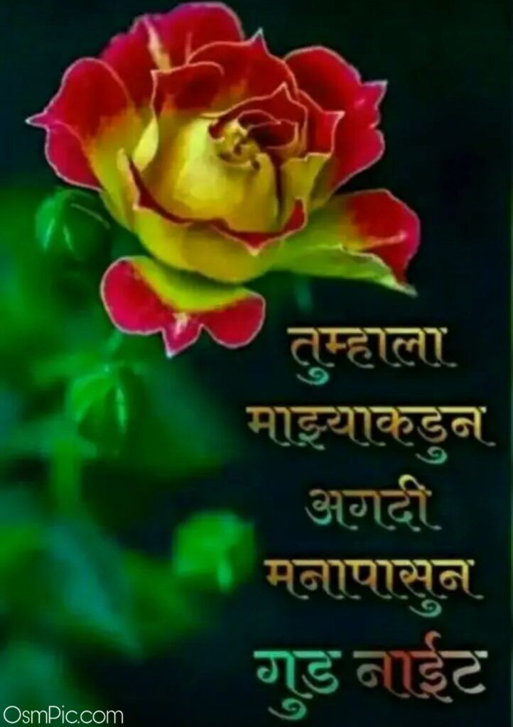 Pin On 2020 Best Good Night Images Pictures In Marathi