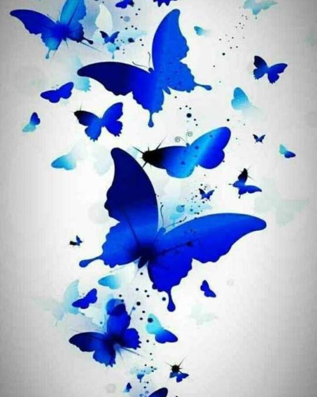 Blue Butterfly Wallpaper C X Illyustracii Akvarel Zhivopis