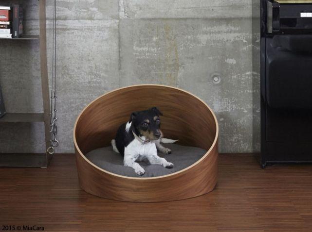 Couchage chien design