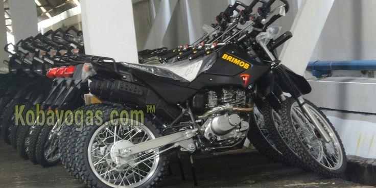 Gamblang... Suzuki DR200S Dipakai Sebagai Kendaraan Dinas Brimob!