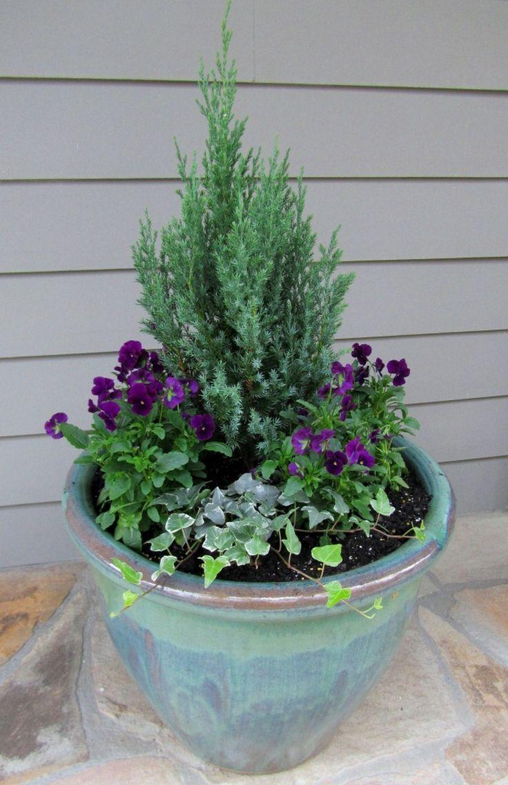 Best 25 winter container gardening ideas on pinterest for Yard planter ideas