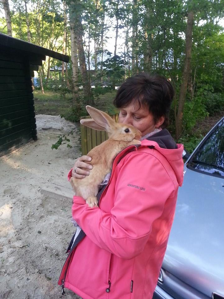 Wat een dotje dit knuffelkonijn!