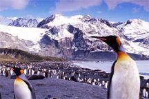 South America destinations and information on accommodations, services, rates, itineraries and activities