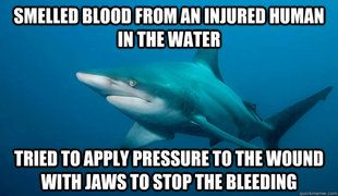 Just tryin' ta help... HELP!  HELP! he_ _0000ooo...: Misunderstood Shark