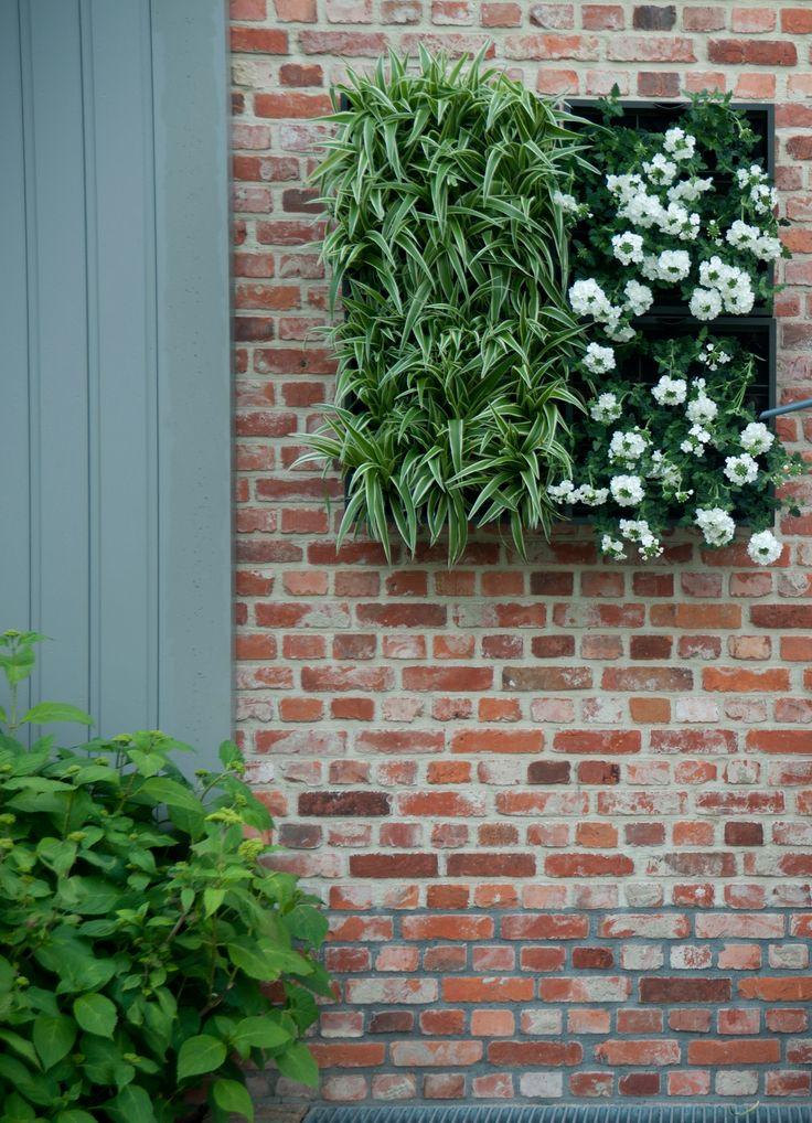De verticale plantenbak past ook perfect buiten aan de muur #garden #plants