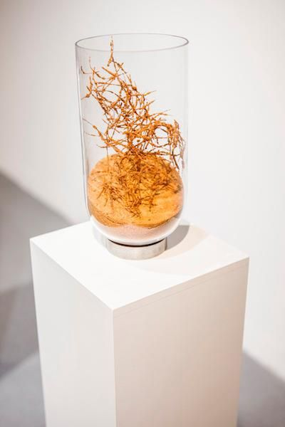 Michal Smandek, Untitled, 2013, sculpture (sand, pelage, glass, steel, wooden pedestal)