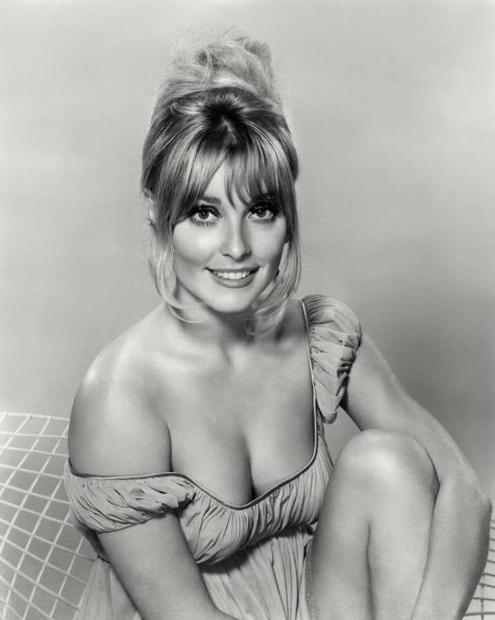 Sharon Tate #cinema
