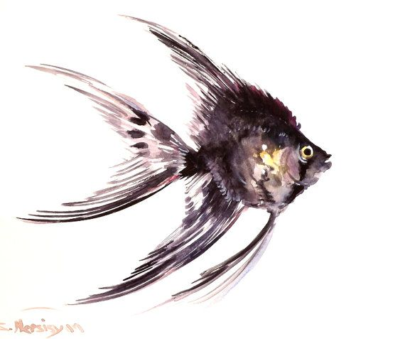 Angelfish original watercolor painting 8 X 10 in by ...